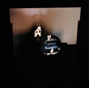 LA SEMILLA DE LA IMAGEN XXX serie I. Fotografía analógica, 2009 thumb